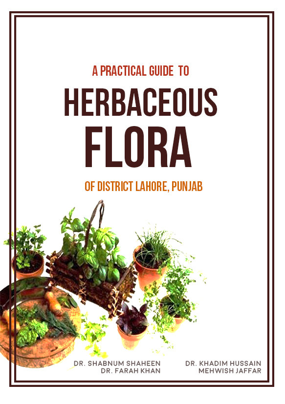 Cover of 'A Practical Guide to Herbaceous Flora'
